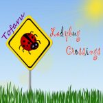 ladybugcrossings cd cover